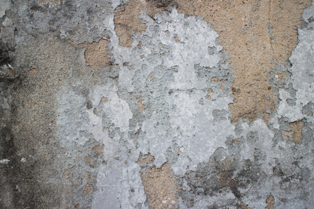black mold: Close up of an old colonial wall in Asia with a variety of textures. A primary white-grey patch occupies the center, with black mold on the left and brownish shandstone showing in other areas.