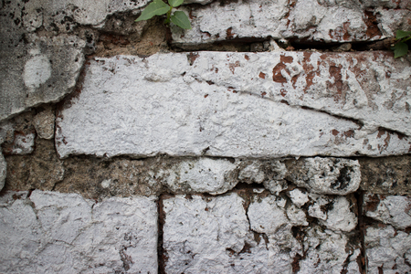 whitewash: Close up of an old brick wall at a former prison in Asia hastily and sloppily painted with whitewash paint. Unpainted mortar and a leaf can be seen betwen the bricks. Stock Photo