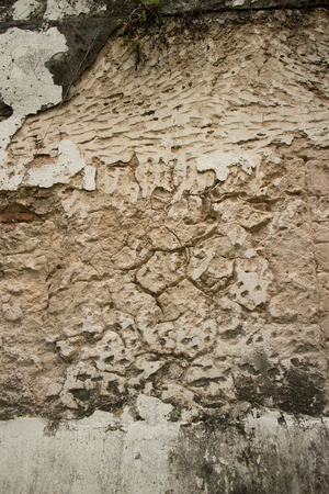 fissures: Vertical view of Colonial stucco wall in Asia with deep fissures, erosion, and chunks visible in the vintage surface. Moss and mold is visible at both top and bottom of frame.
