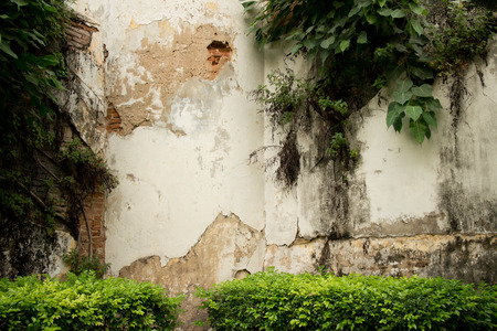 medium shot: Medium shot of old corner guard tower at colonial era prison in Southeast Asia; numerous forms of tropical vegetation are visible. This architectural detail features white, beige, and green organic textures.