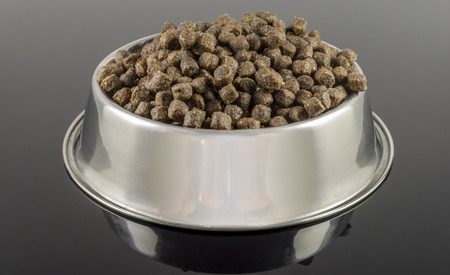 brown dogs food in bowl on black background