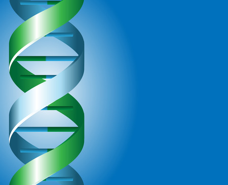 Green and blue DNA spirals with shadow illustration Illustration
