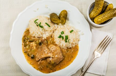 gherkin: Czech traditional food Znojmos sauce with gherkin and pork meat and rice on white