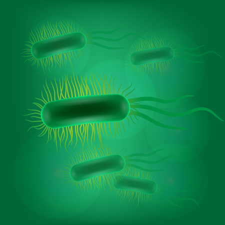 escherichia coli: Escherichia coli virus on green background illustration