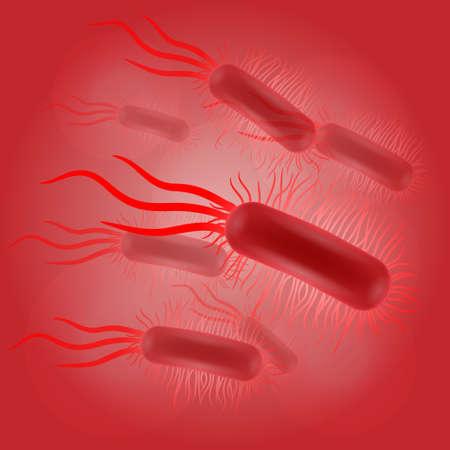escherichia: Escherichia coli virus on red background illustration