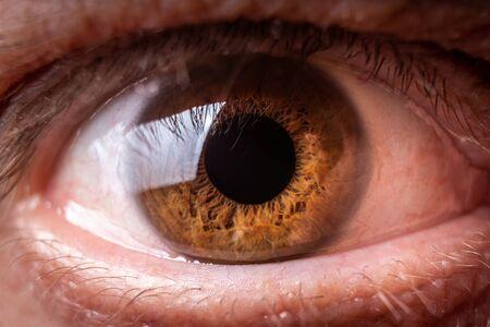 Macro d'oeil humain brun ou photographie en gros plan