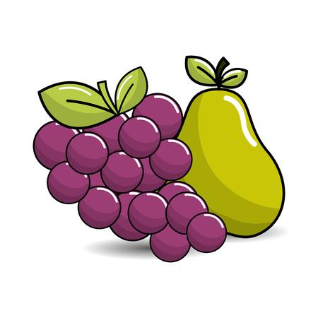 mango slice: grape and pear fruits icon