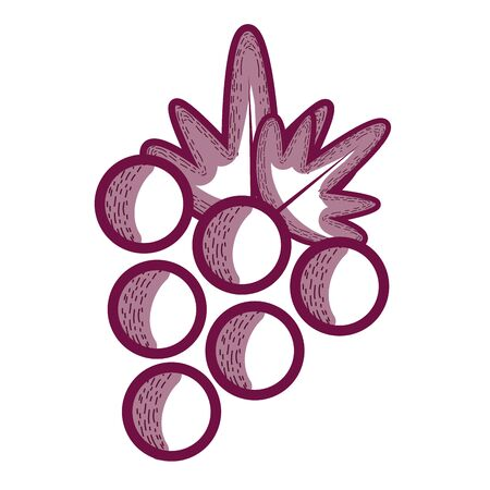 Delicious grape fruit icon Stock Vector - 77144181