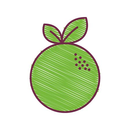 green delicious orange fruit icon