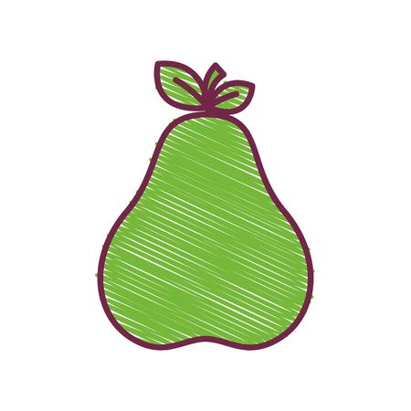 green delicious pear fruit icon