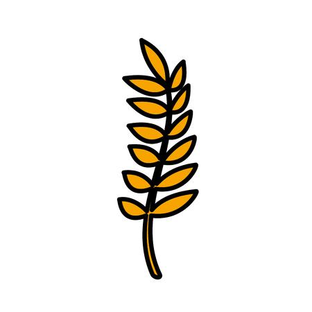 Healthy wheat organ plant nutritious. Ilustração