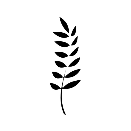 Contour healthy wheat organ plant nutritious.