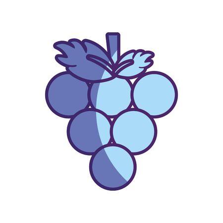 Delicious grape fruit icon