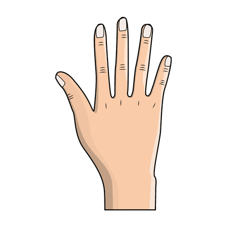 nice hand with all fingers and nails Illustration