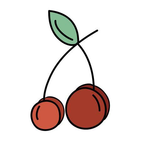 Delicious fresh cherry organic fruit, vector illustration. Illustration