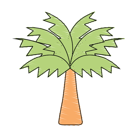 palm tree with leaves and vegetation