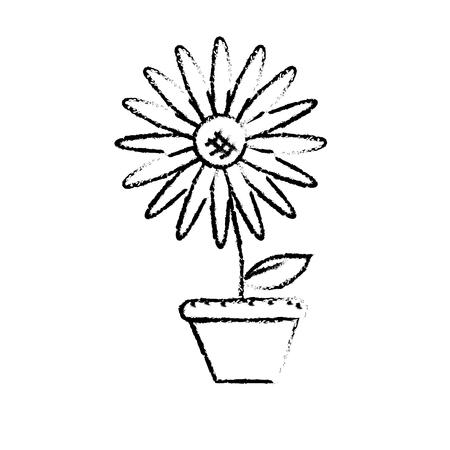 figure beautiful sunflower in the flowerpot