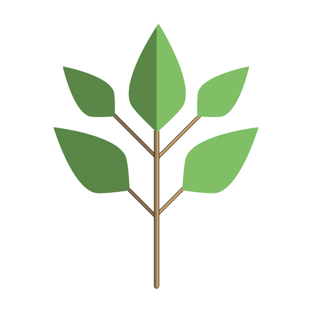 Ecology plants with leaves icon vector illustration.