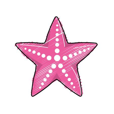 estrella de la vida: Animales de mar de estrellas de belleza que viven en el mar
