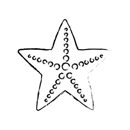star fish: figure beauty starfish animal that live in the sea