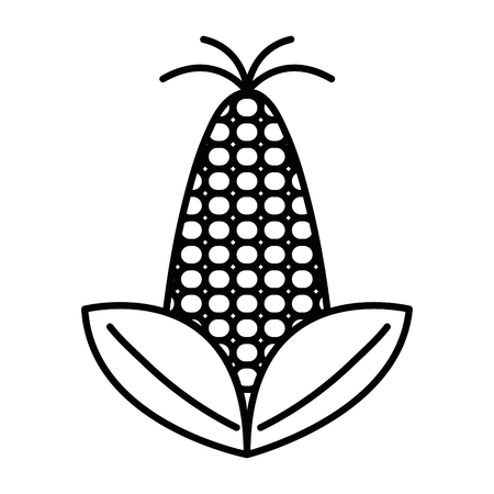 Line delicious and healthy corn vegan food vector illustration. Illustration