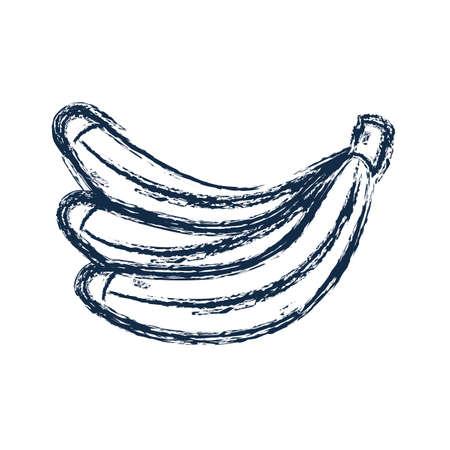 figure delicious banana fruit to healthy life vector illustration