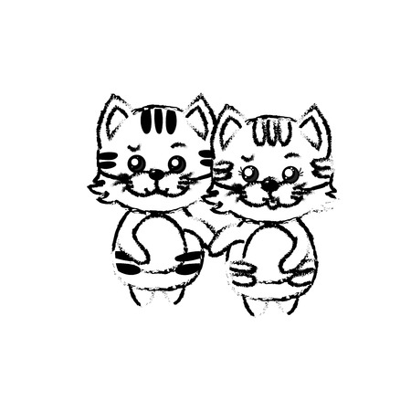 figure cute couple cat wild animal with beautiful expression