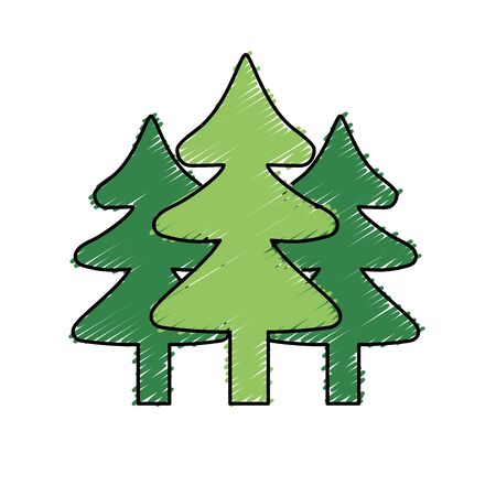 cultivated: natural pine trees to ecology reserve vector illustration Illustration