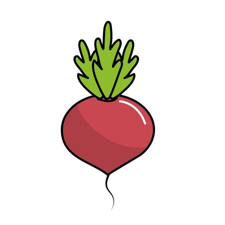 cultivate: delicious and health onion vegetable vector illustration