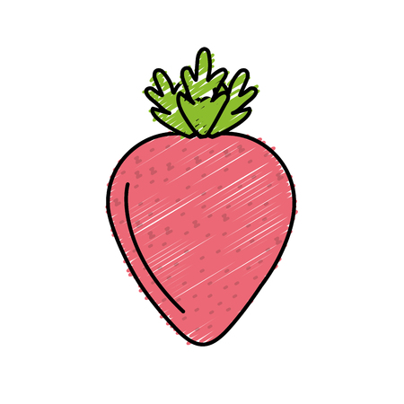 delicious and healthy strawberry fruit vector illustration Illustration
