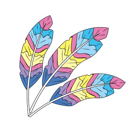 beauty feathers style with decoration design Illustration