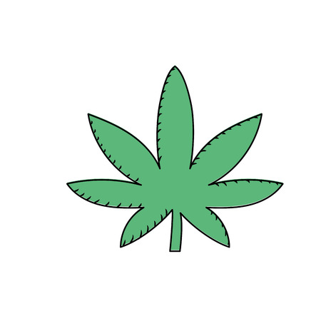 marijuana plant with leaves and medical herb