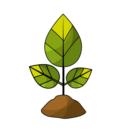 natural plant with leaves and ground to ecology care Illustration