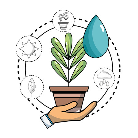 ecology plant with water drop and icons to environment care vector illustration