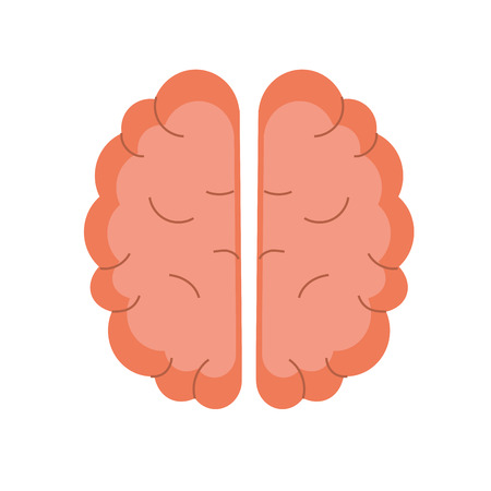 Creative brain with idea over white background vector illustration