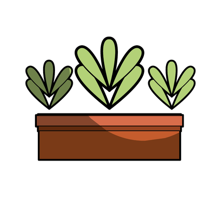 ecological plant with leaves inside flowerpot vector illustration Illustration