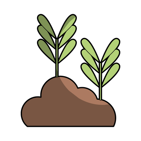 natural plants with leaves and botanic ground vector illustration Illustration