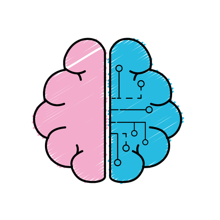 anatomy brain with circuits digital connection vector illustration Illustration