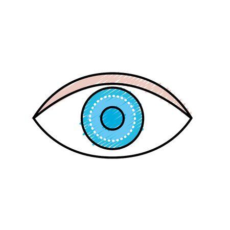 eye human anatomy my to optical graphic