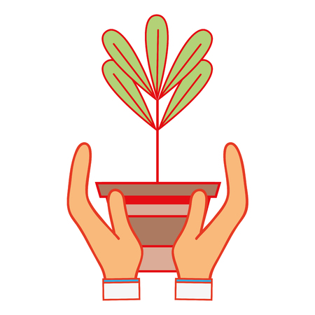 plant with leaves inside flowerpot design in the hands Illustration
