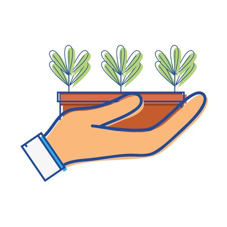 ecological plants with leaves inside flowerpot in the hand