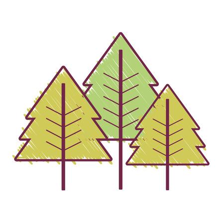 beauty natural pine tree design vector illustration Illustration