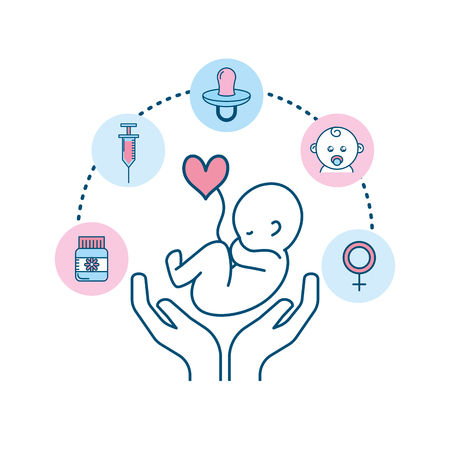 set pregnancy fertilization process to biology reproduction