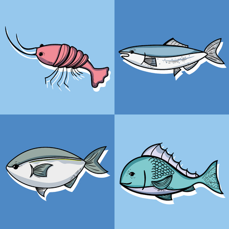 set fishing recreation with special tools vector illustration