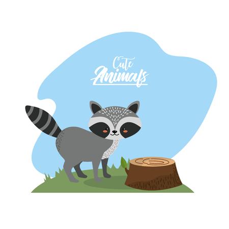 cute raccoon animal to natural wildlife