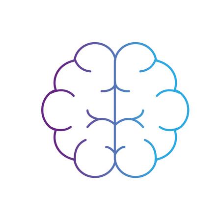 line brain human anatomy organ of inteligence vector illustration Ilustrace