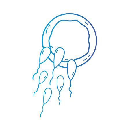 line reproduction fertilizing ovum vector illustration icon