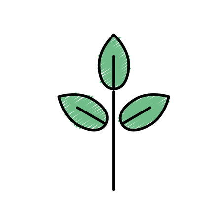 natural plant with leaves design to ecology care