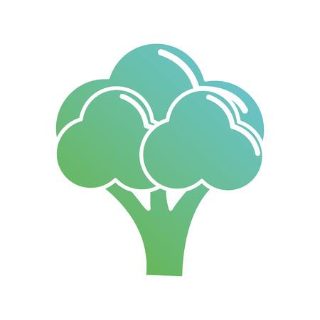 contour organic broccoli vegetables nutrition vector illustration Illustration