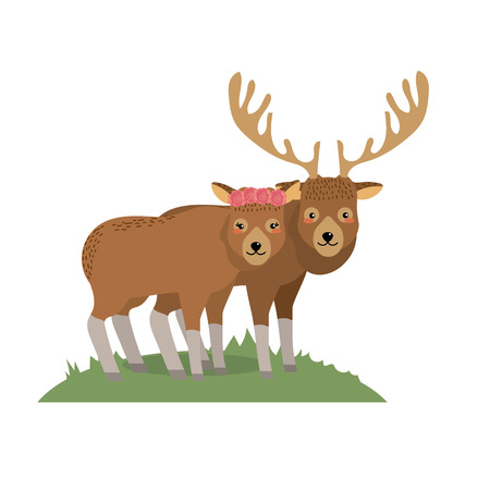 cute elk animal couple together vector illustration Illusztráció